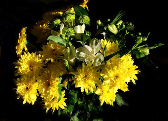 emmas-blommor1