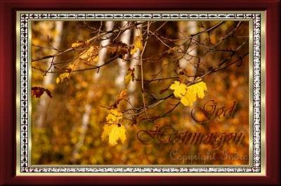 fall111