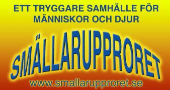 logo_stor1