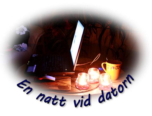 natt-vid-datorn1