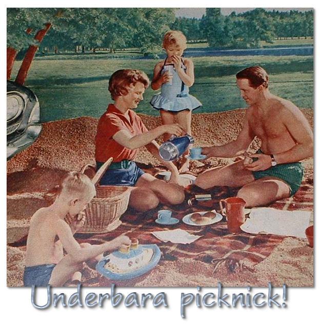 picknick-a1