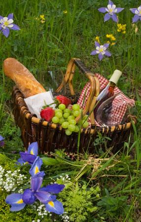 picknick_1
