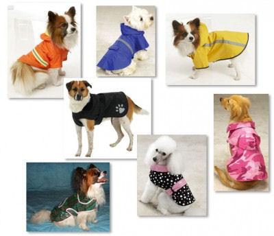 Regnkläder hund
